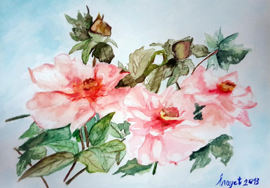 Çiçekler - 30x40cm Kalın kağıda Suluboya Çerçeveli