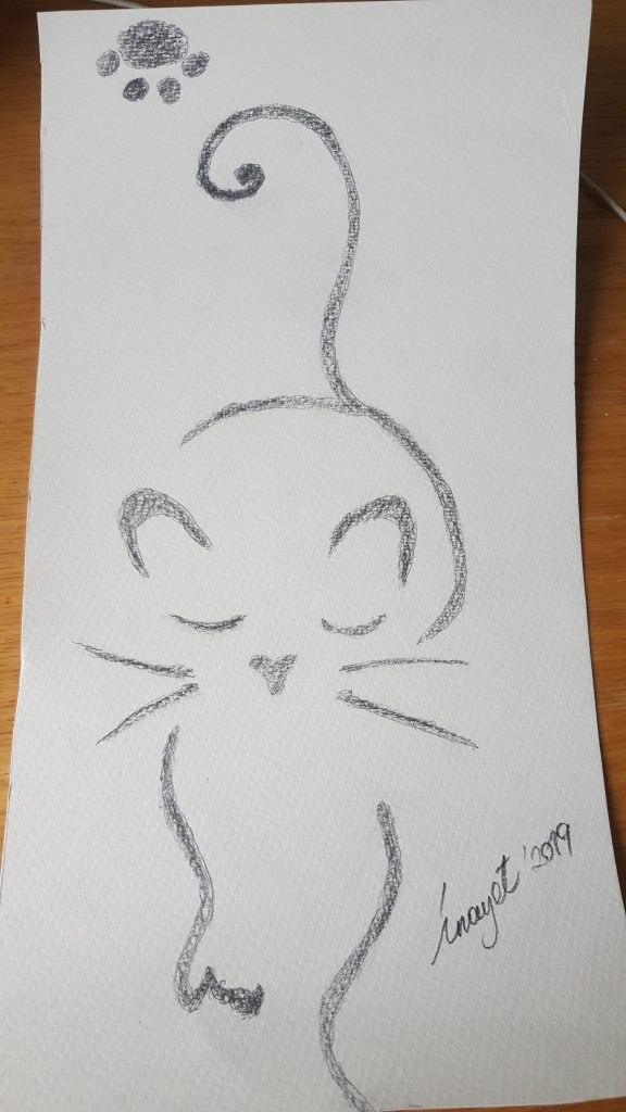 Hayalet kedi, 21 x 40 cm kabartma kağııt üzerine karakalem  100 TL