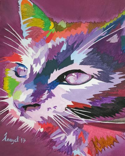 Mor Kedi