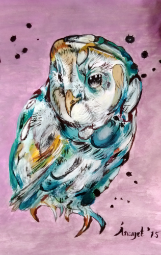 Mavi Baykuş
